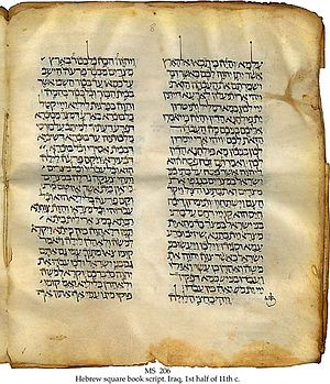 11th century Hebrew Bible with targum, perhaps...