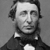 Zitat am Freitag: Thoreau über den Wald
