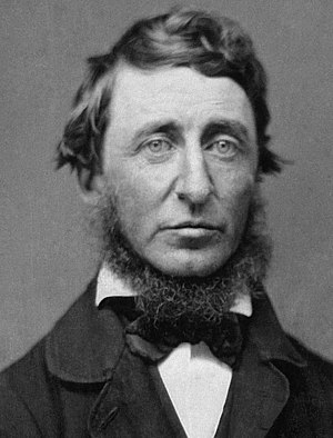 Henry David Thoreau (1817-1862) in June 1856 (...