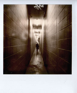 Impossible project polaroid type film