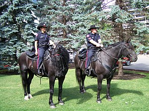 English: Two mounted members of the Calgary Po...
