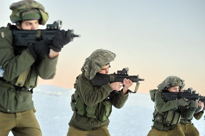 Flickr - Israel Defense Forces - Golani Brigade Conducts Exercise in Mount Hermon Snow (7)