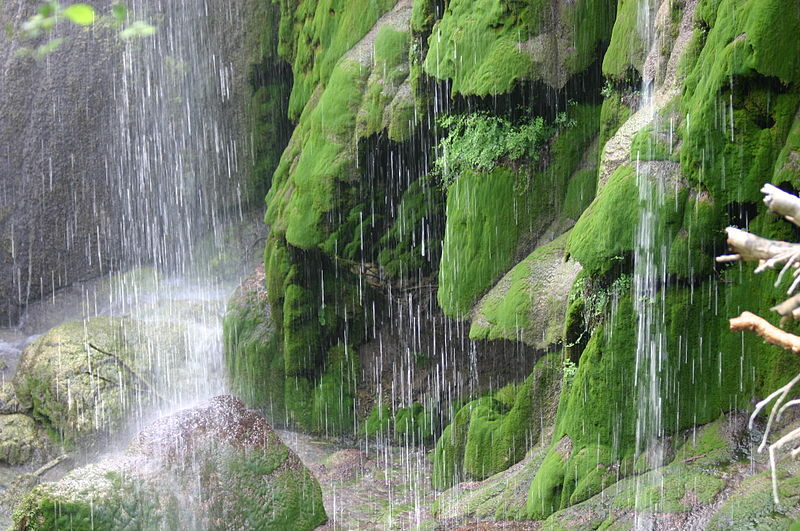 File:Base of Gorman Fall like Raining.jpg