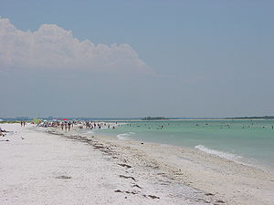 This photograph was taken at Honeymoon Island ...