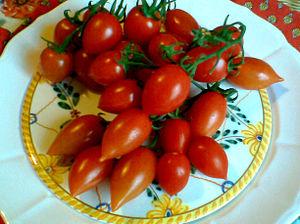 "Italiano: Pomodori ""Pizzutello"", var..."