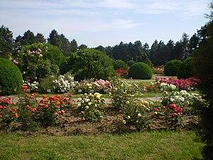 Iaşi , Botanical Garden , Iaşi , Romania