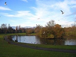 Braunstone Park, southeast side. taken from wa...