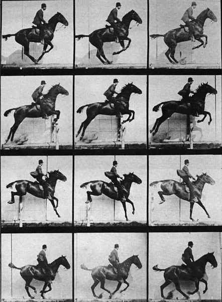 Sequence of a horse jumping, Muybridge (a. 1880)
