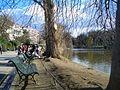 Au bord du lac artificiel du parc Montsouris.JPG