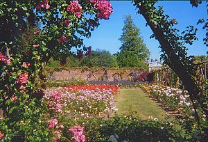 English: Rose Garden at Polesden Lacey