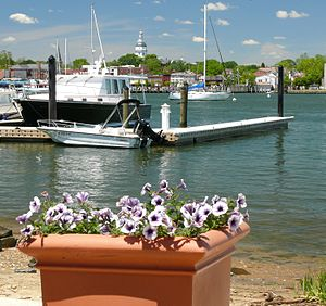 Annapolis Maryland looking across an estuary t...