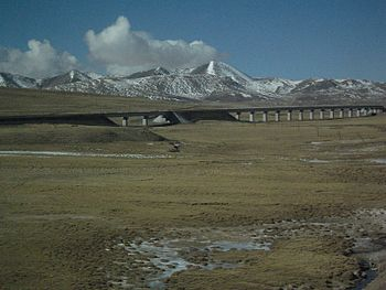 Tibetan railway bridge