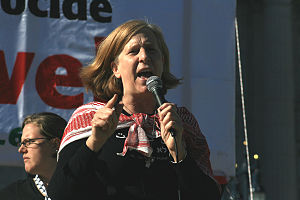English: Cindy Sheehan speaks at free Palestin...