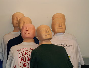 English: First aid training dummies.