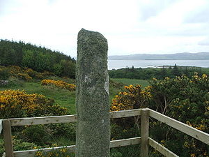 The Ogham Stone, , , Scotland. Not very photog...