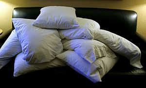 English: A pile of pillows.