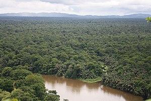 English: Tortuguero National Park, Costa Rica....