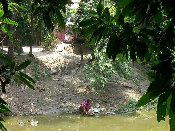 Woman Washing at Water's Edge, Bangladeshi Village