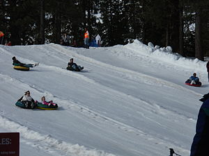 English: Snow tubers going down a hill.