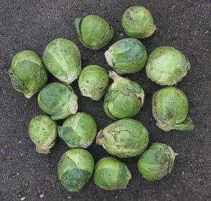 Brussel sprouts (spruitjes)
