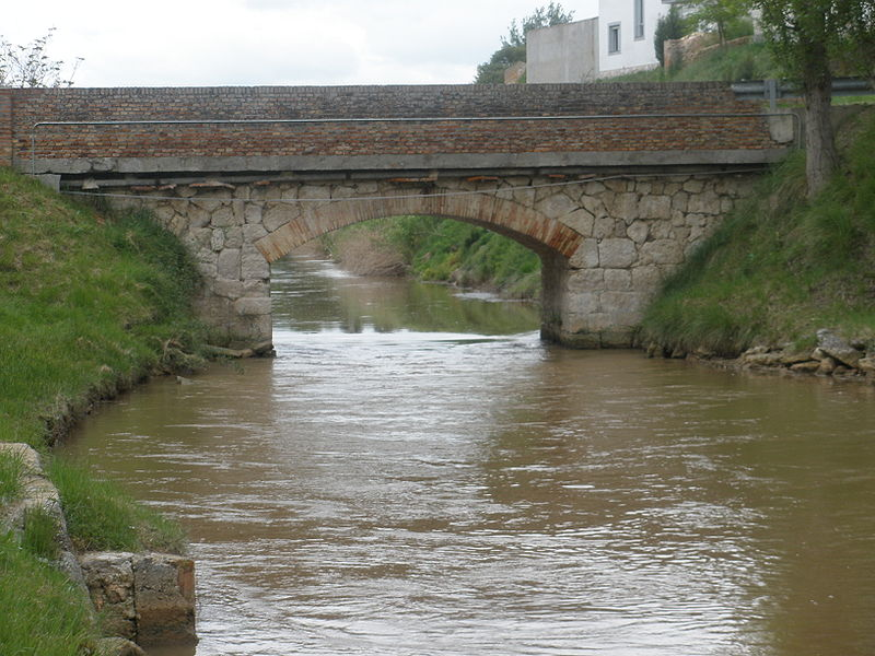 Canal del Duero por Sardón de Duero