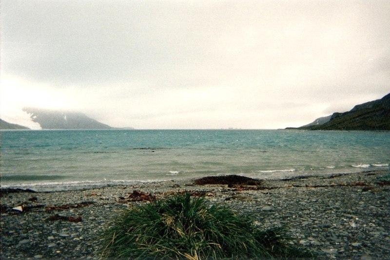 King Haakon Bay in South Georgia Island