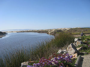 English: Pismo Creek estuary, Pismo Beach. tak...