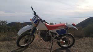 Honda XR250R and XR250L  Wikipedia