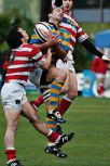 An airborne player wearing a hooped blue and yellow jersey is challenged by two opponents after leaping to catch a high ball.