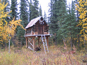 English: Moose Creek Shelter Cabin food cache,...