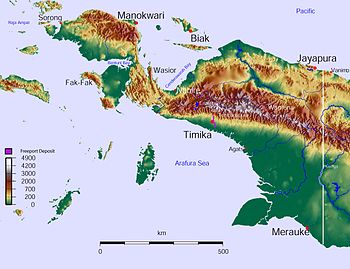 West Papua Topographic Map