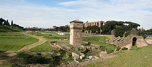 Wide view of Circus Maximus, Rome, Italy. Pano...