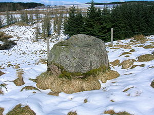 English: The Gowk Stane, Low Overmuir, Darvel,...