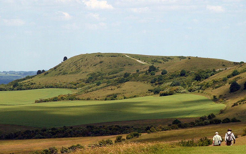 File:Ivinghoe Beacon seen from The Ridgeway.jpg