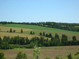 English: Prince Edward Island, farmland