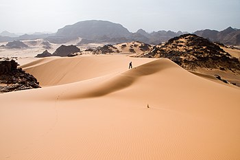 English: Leaving traces on soft sand dunes in ...