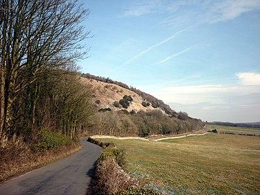El camino entre Arnside y Silverdale - geograph.org.uk - 1760381.jpg