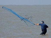 Seorang nelayan menebarkan jala