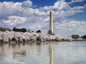 The Washington Monument in Spring 2007. The sh...