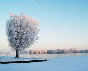 Sneeuw-Weegje