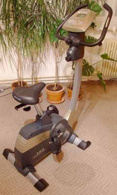 English: Stationary bicycle Česky: Rotoped Deu...
