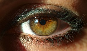 A woman's eye. Esperanto: Virina okulo. França...