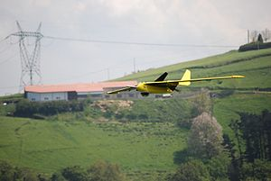 Aerovision Fulmar UAV during a recent flight