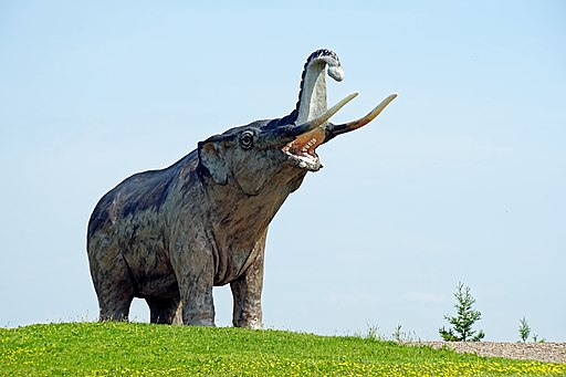 El mastodonte como ejemplo de fauna del Mioceno