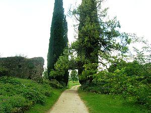 Italiano: Sentiero del giardino