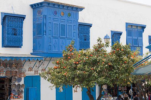 Sidi Bou Said(js)19