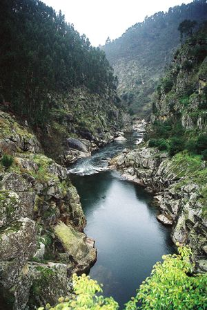 https://i2.wp.com/upload.wikimedia.org/wikipedia/commons/thumb/d/d1/Rio_Paiva_em_Alvarenga.jpg/300px-Rio_Paiva_em_Alvarenga.jpg