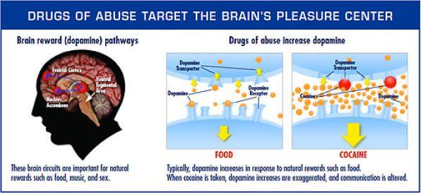 Symptoms of Opioid Addiction