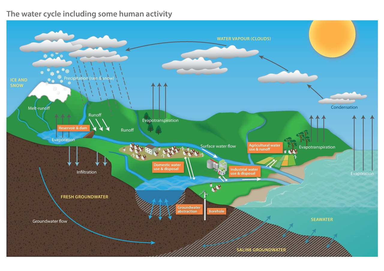 File Diagram Of The Water Cycle Including Some Human Activity