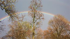 English: Rainbow